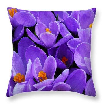 Purple Crocus Throw Pillow by Elena Elisseeva