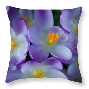 Purple Crocus Gems Throw Pillow