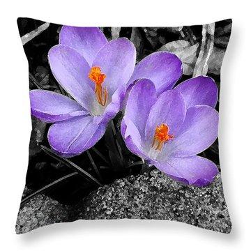 Purple Crocuses - F2g Throw Pillow