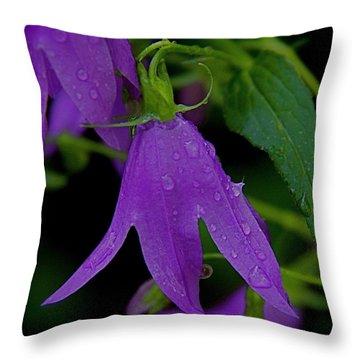 Purple Throw Pillow by Daniel Sheldon