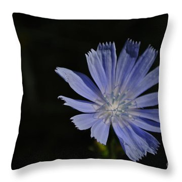 Purple Emerging Throw Pillow