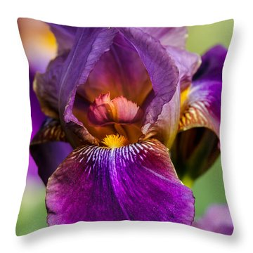 Purple Flag Throw Pillow