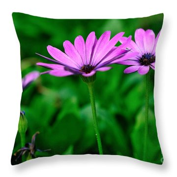 Throw Pillow featuring the photograph Purple Flowers by Joe  Ng