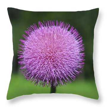 Purple Fuzz Throw Pillow