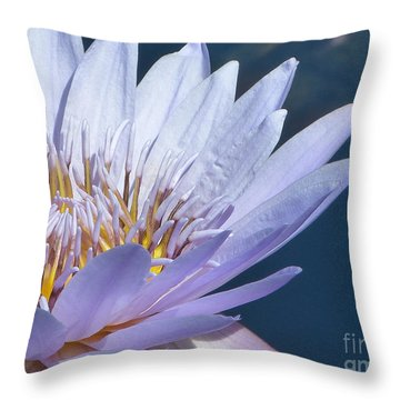 Purple Glory II Throw Pillow