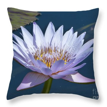 Purple Glory Throw Pillow