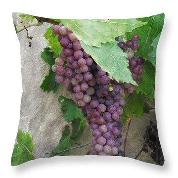 Purple Grapes On The Vine Throw Pillow