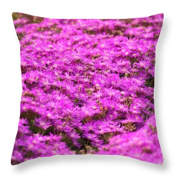 Purple Hills Throw Pillow