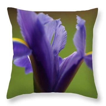 Purple Iris 7 Throw Pillow by Carol Lynch