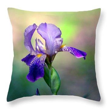 Purple Iris Throw Pillow by Deena Stoddard