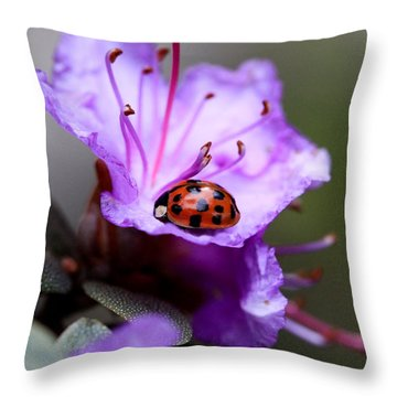 Purple Lady Throw Pillow by Aaron Aldrich