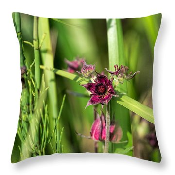 Throw Pillow featuring the photograph Purple by Leif Sohlman
