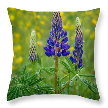 Purple Lupines Throw Pillow