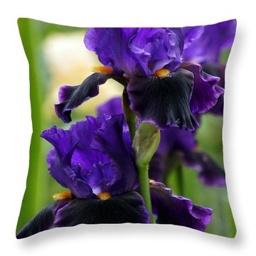 Purple Majesty Throw Pillow