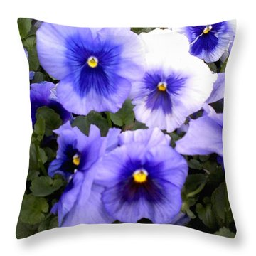 Throw Pillow featuring the photograph Purple Morning Glory by Fortunate Findings Shirley Dickerson