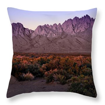 Throw Pillow featuring the photograph Purple Mountain Majesty by Barbara Chichester