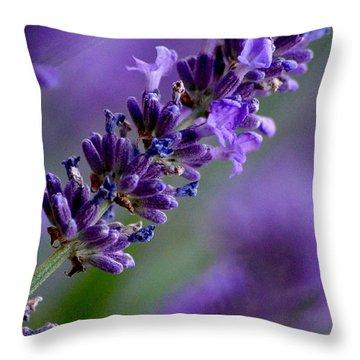 Purple Nature - Lavender Lavandula Throw Pillow