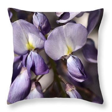 Throw Pillow featuring the photograph Purple Of Wisteria by Joy Watson