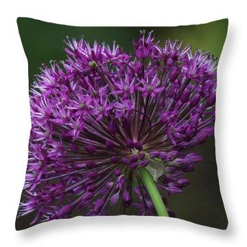Purple Onion Throw Pillow by Bill Woodstock