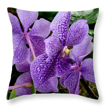 Purple Orchids Throw Pillow by Carey Chen