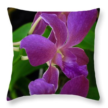 Throw Pillow featuring the photograph Purple Over Green by Greg Allore