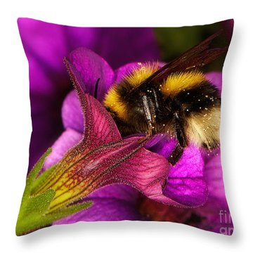 Purple Petunias With A Bumblebee Throw Pillow