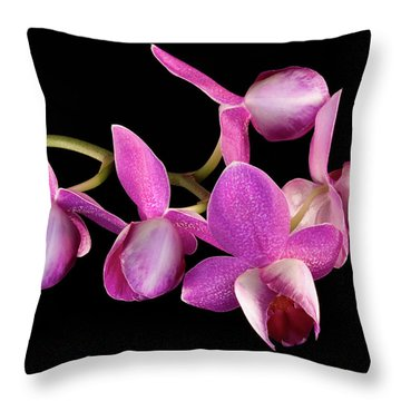 Throw Pillow featuring the photograph Purple Phal by Vickie Szumigala