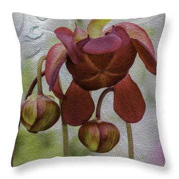 Throw Pillow featuring the photograph Purple Pitcher Plant by Betty Denise