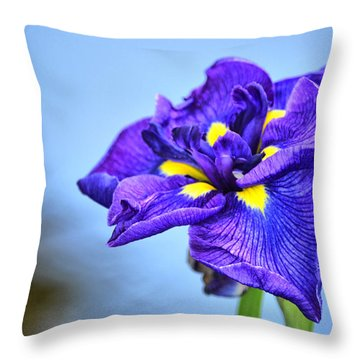 Purple Pond Iris Throw Pillow