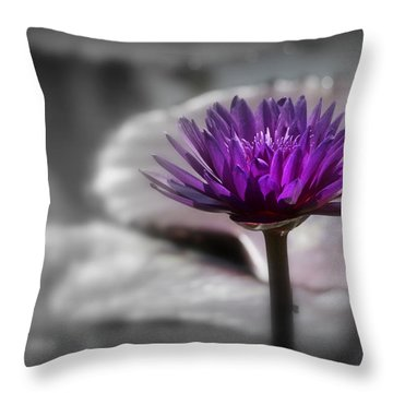 Purple Pond Lily Throw Pillow by Lynn Sprowl