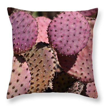 Purple Prickly Pear Cactus Throw Pillow by Rona Black