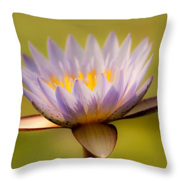 Purple Promise Throw Pillow
