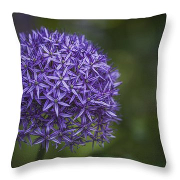 Purple Puff Throw Pillow by Jacqui Boonstra