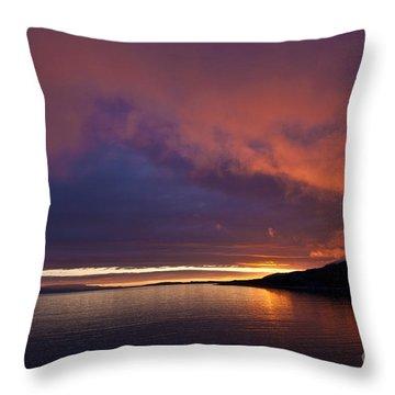 Purple Skies Throw Pillow by Heiko Koehrer-Wagner