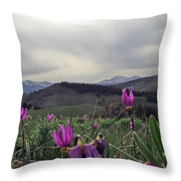 Throw Pillow featuring the digital art Purple Spring In The Big Horns by Cathy Anderson