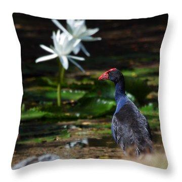Purple Swamphen Admiring The Water Lilies Throw Pillow by Mr Bennett Kent