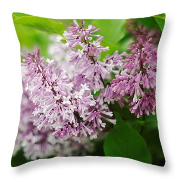 Throw Pillow featuring the photograph Purple Syringa Flowers by Suzanne Powers