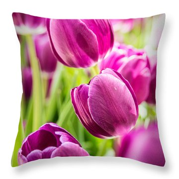 Purple Tulip Garden Throw Pillow
