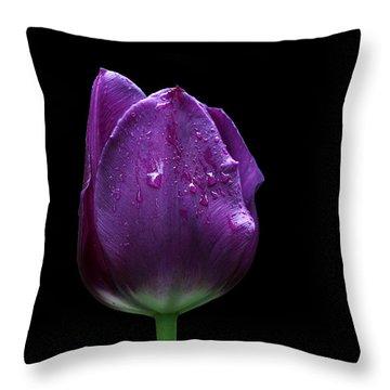 Purple Tulip Throw Pillow