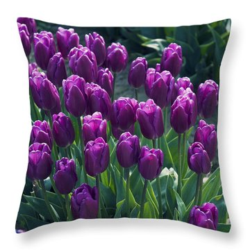 Purple Tulips Throw Pillow