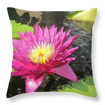 Purple Water Lily Throw Pillow by Richard Reeve