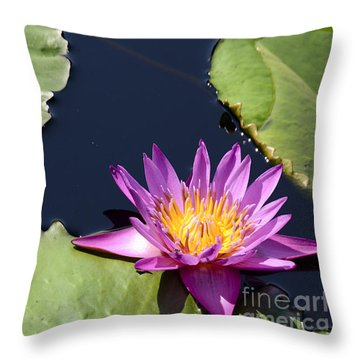 Purple Waterlilly Throw Pillow
