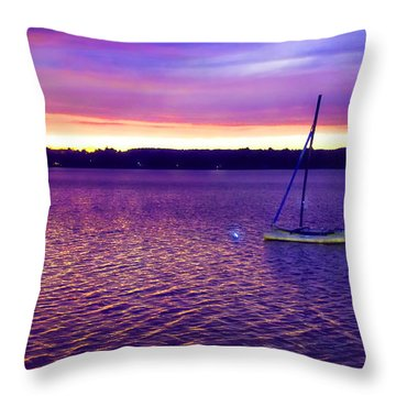 Throw Pillow featuring the photograph Purple Waters  by Cindy Greenstein