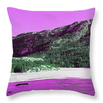 Purple Winter Triptych Throw Pillow by Barbara Griffin