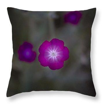 Purplish  Throw Pillow