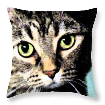 Throw Pillow featuring the photograph Purrfectly Bright Eyed by Nina Silver