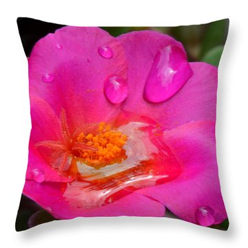 Purslane Flower In The Rain Throw Pillow by Sandi OReilly