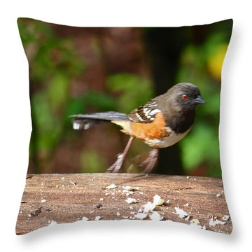 Push Off Before Take Off Throw Pillow by Kym Backland