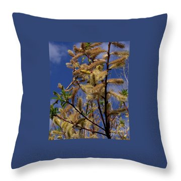 Pussy Willow In Bloom Throw Pillow