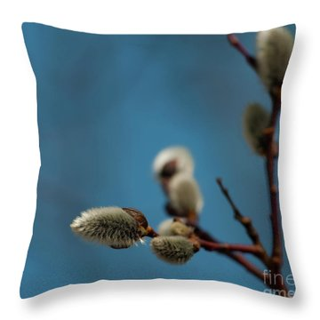 Pussy Willow... Throw Pillow